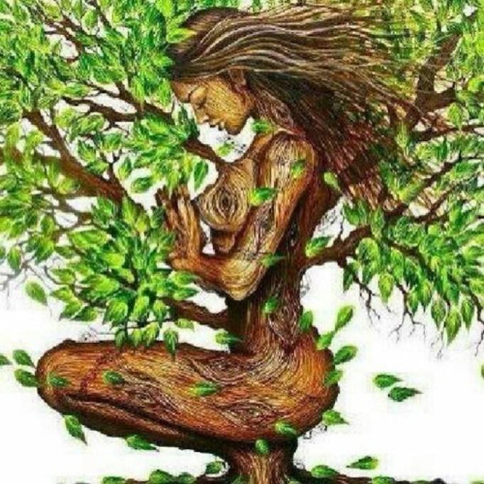 Eco-feminism.jpg