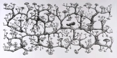 Richard Giblett Recent work : 2006-2009 Represented by Galerie Dusseldorf 21. Mycelium Rhizome, 2009 Pencil on paper 120 x 240 cm Collection of the artist Represented by Galerie Dusseldorf
