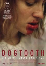 dogtooth-kynodontas-20776