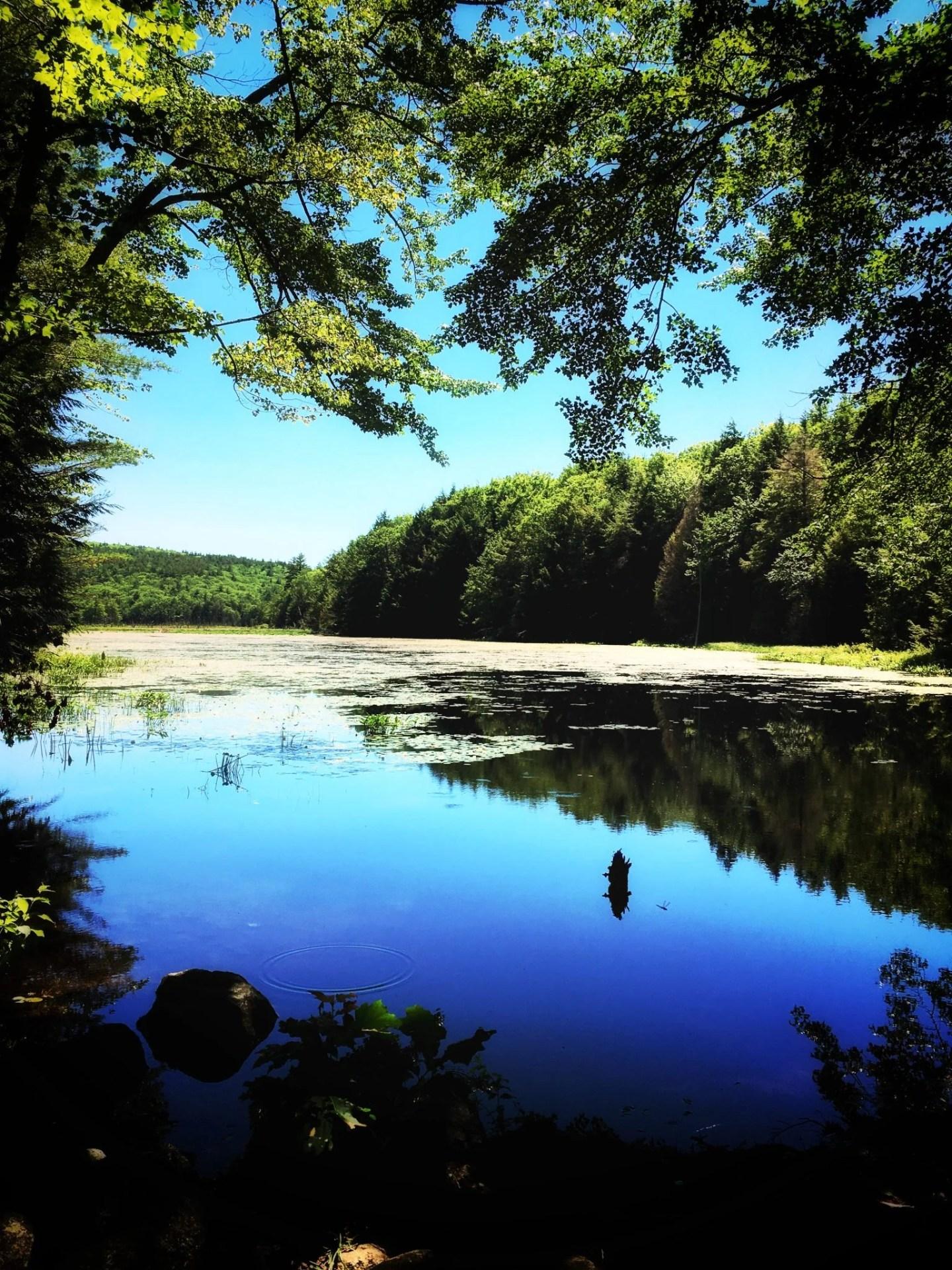 Gilman Pond, Alton, Lake Winnipesaukee tour, New Hampshire