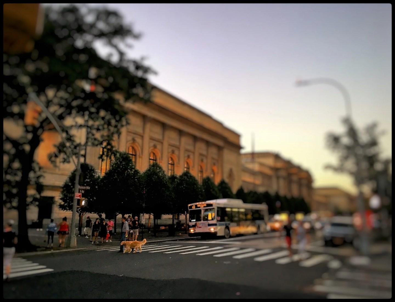 The Met Museum