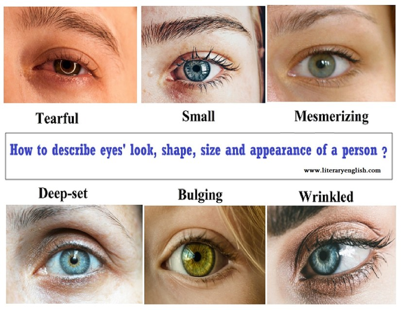 shape, size and color of eyes