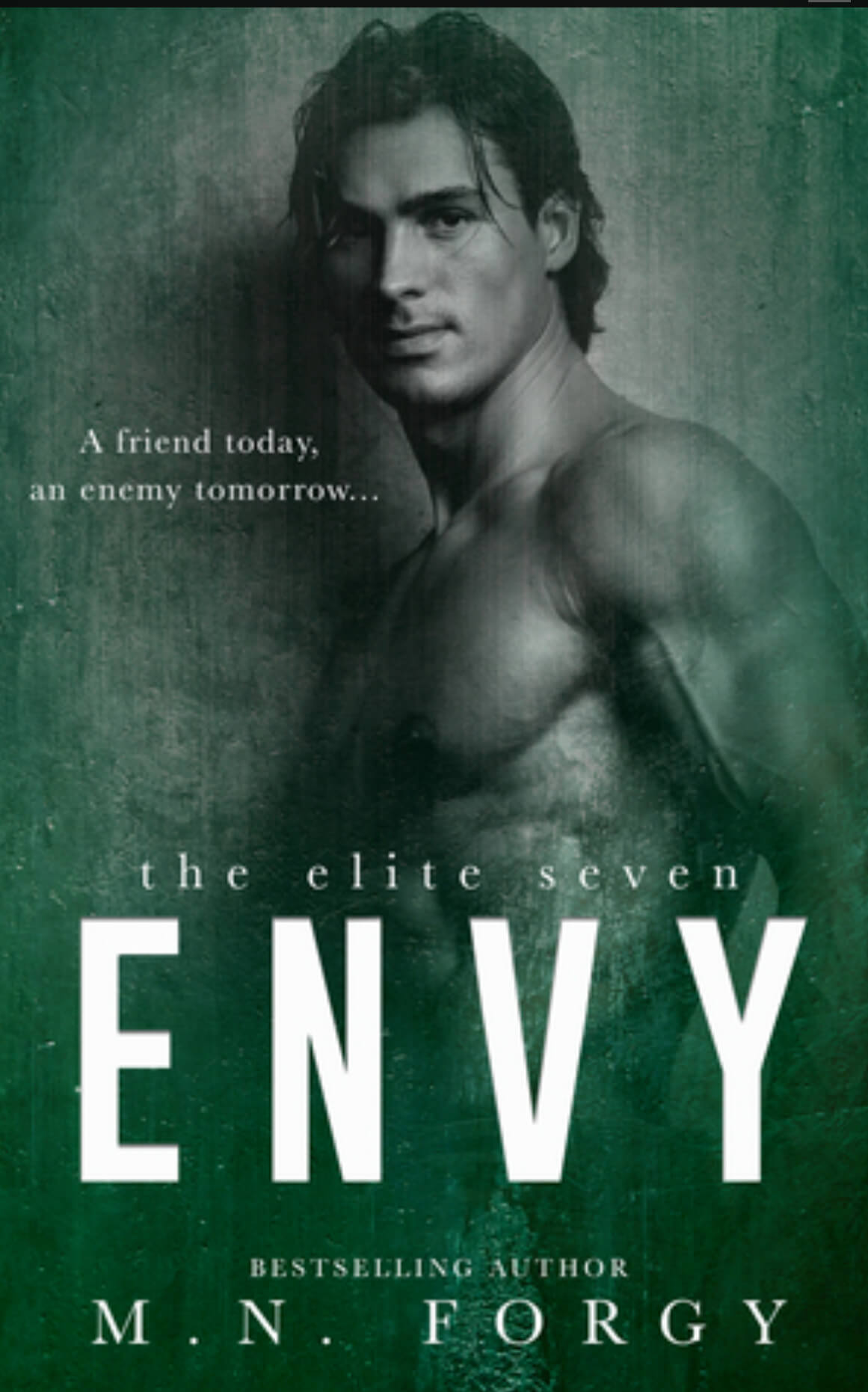 Release Week * Envy (the Elite Seven book 4) by MN Forgy * Blog Tour * Book Review * Giveaway