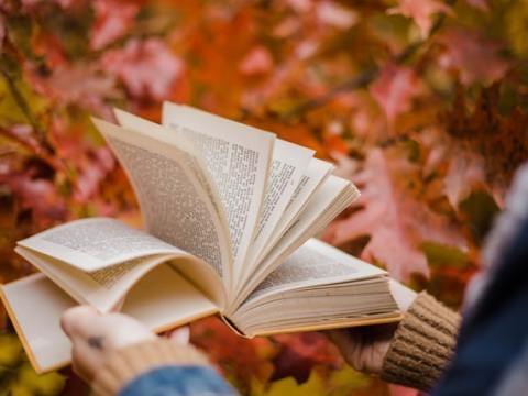 E-Book-Markt : Digital-Dienstleister readbox zieht Bilanz