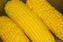 corn_creditf_a_flickr