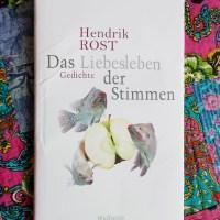 Hendrik Rost: Das Liebesleben der Stimmen Wallstein Verlag