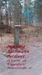 Bild1 Bachmannweg