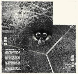 """Zeichnung """"Frozen Spider Monkey"""" - zu sehen in der Ausstellung """"Max P. Häring: Variationen zu Thomas Pynchon"""" im Ulmer Café Schmizz, Judenhof 3."""