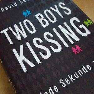 Two Boys Kissing ~ David Levithan