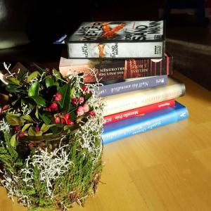 Buchhandlungsbesuch ~ Findus in Tharandt