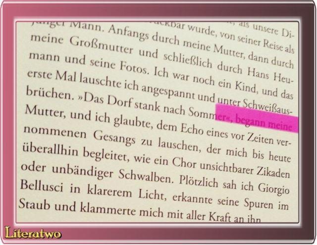 Zwischen zwei Meeren_Carmine Abate_Aufbau Verlag_Literatwo_Buch_Sommer