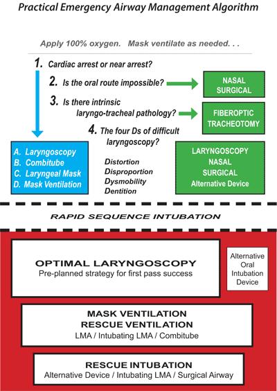 Difficult Airway Algorithms • LITFL Medical Blog • CCC Airway