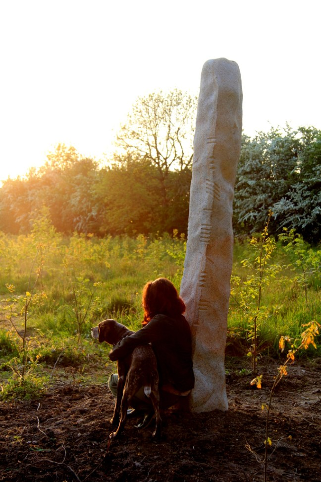 Ogham tree teaching stone, Killedmond, Co. Carlow: Granite