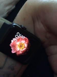 Apple Watch: An Elegant Face