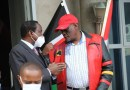 Wiper And Jubilee Parties to Form Coalition Before 2022 Elections, Says Senator