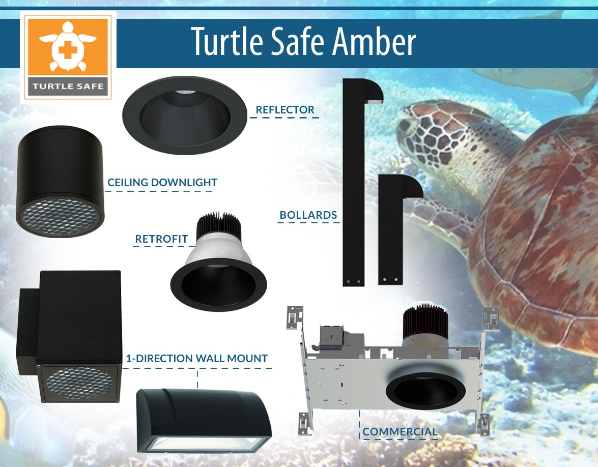 liton turtle safe amber products