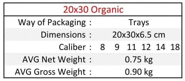 20x30 ORG EN1