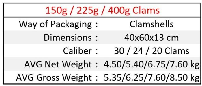 40x60 clams EN