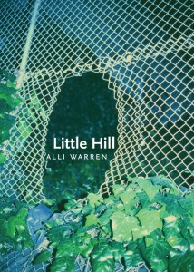 front cover of Little Hill