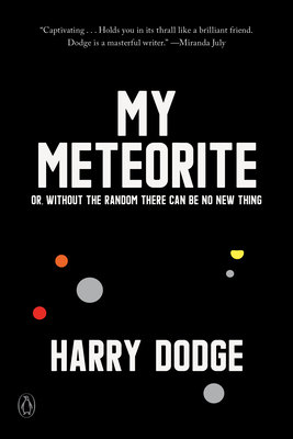 front cover of My Meteorite