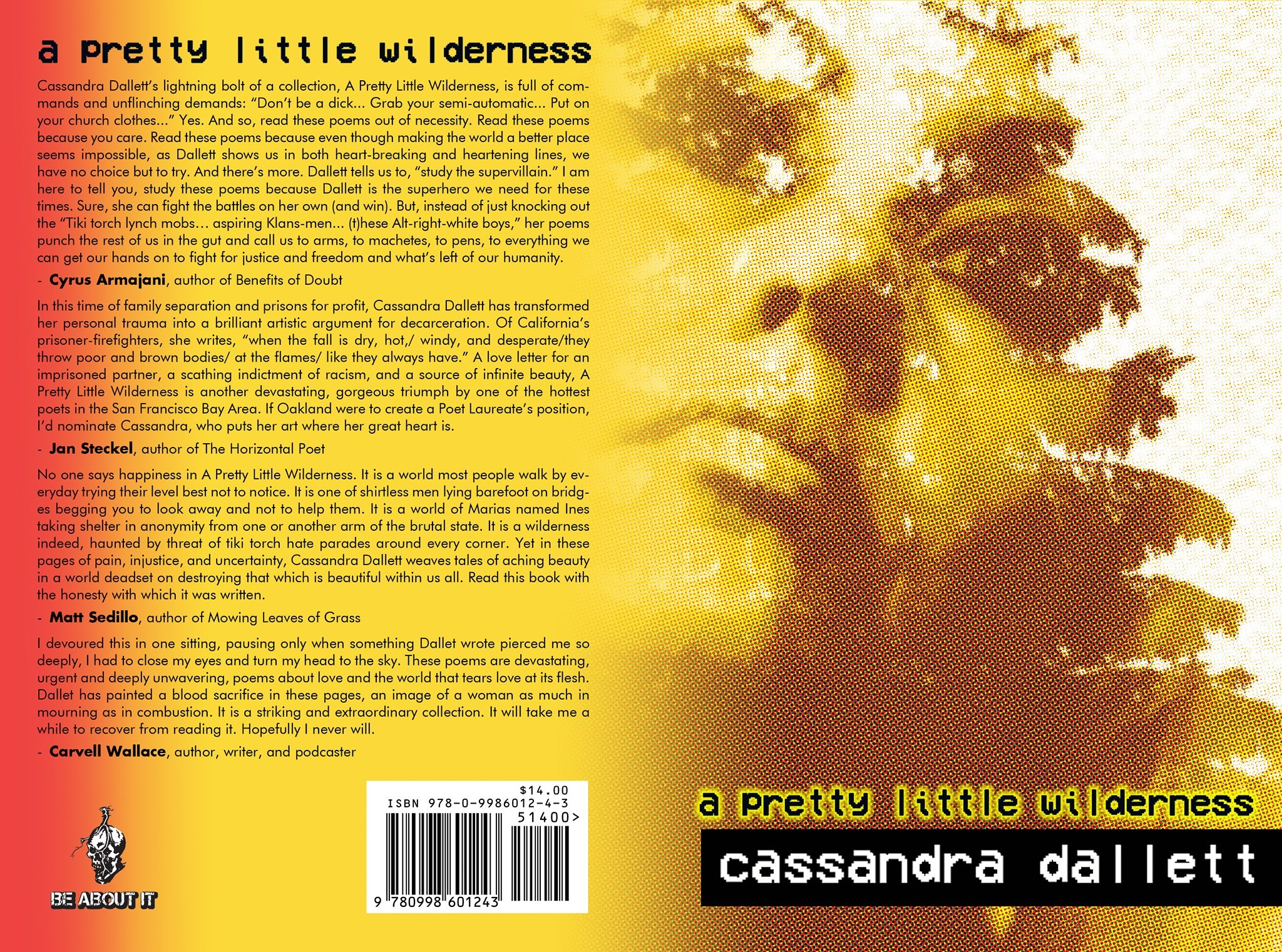 A Pretty Little Wilderness- Be About It Press Book Release Party