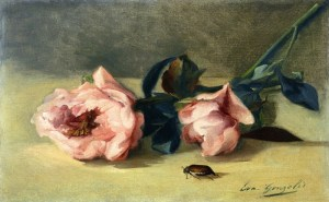 Gimbling in the Wabe – My Thoughts on June Bugs