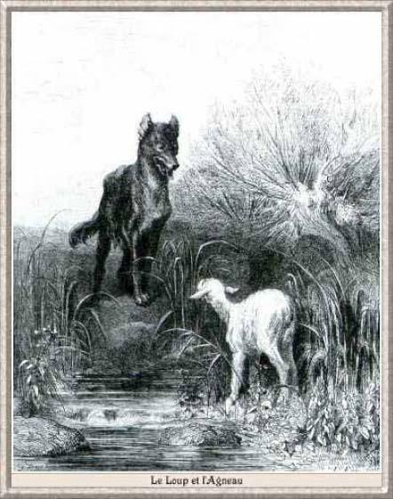 Le Loup Et Le Chien Analyse : chien, analyse, Troisième, Dernière, Partie, Question, L'illustration, Litterajeunesseblog