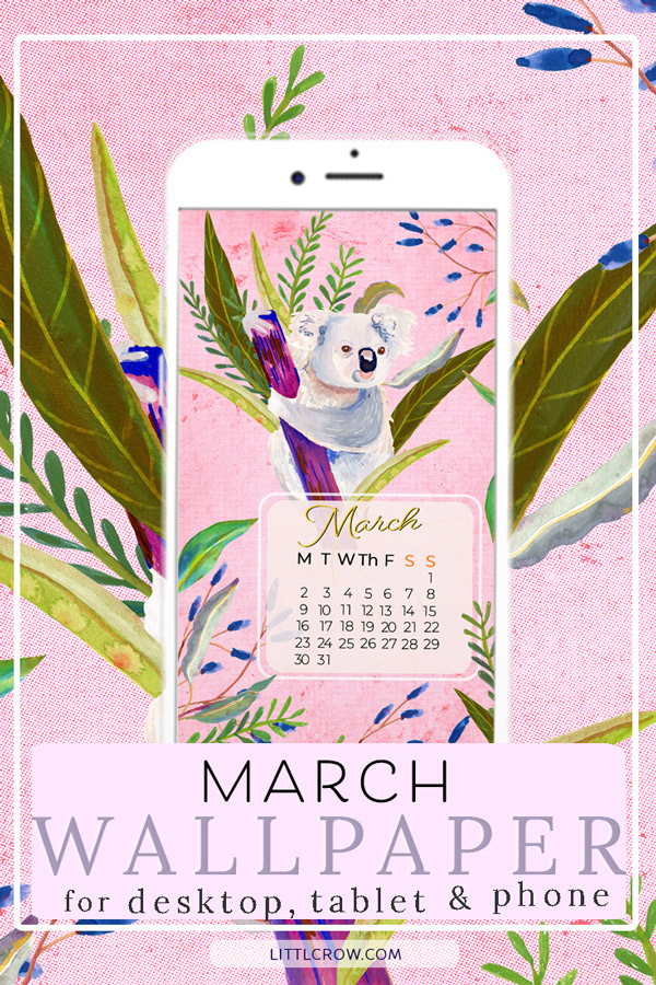 Koala with foliage for March wallpaper calendar by Jimena Garcia (LittlCrow)