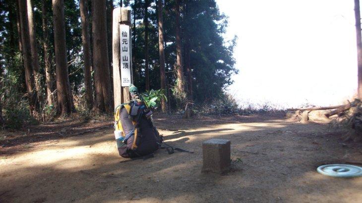 仙元山 <299m> (JA/ST-021) 埼玉県比企郡小川町