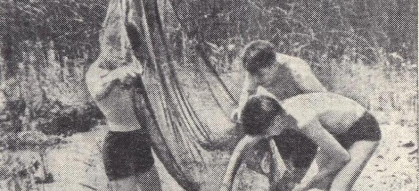 "Снимок из журнала ""Пионер"". 50-е годы"
