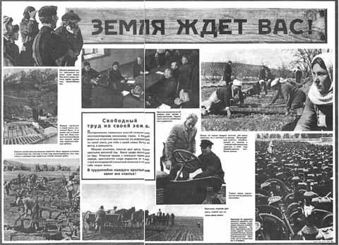 Первоначально немцы не скупились на обещания земли и воли для жителей оккупированных областей