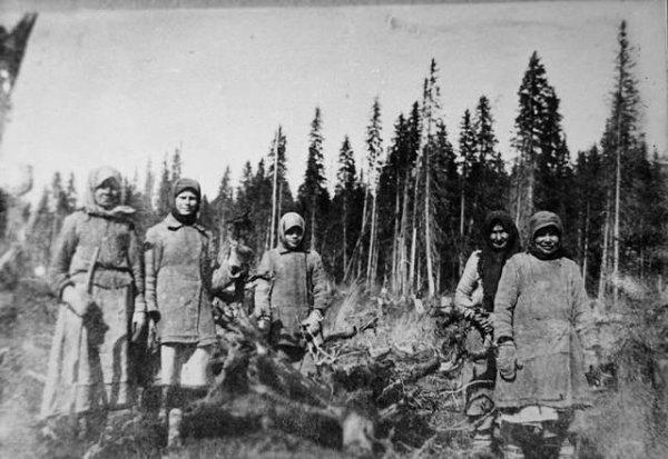 Женщиины-спецпереселенки на раскорчевке лесосеки. Северный край. 1930 год