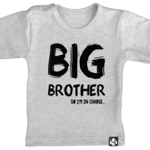 baby tshirt korte mouw grijs big brother