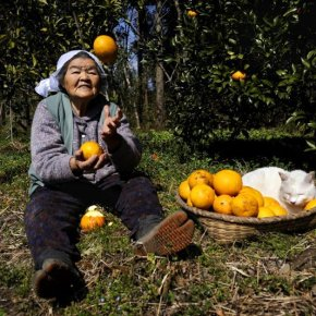 MISAO, THE JAPANESE GRANDMOTHER AND HER FRIEND, FUKUMARU THE CAT