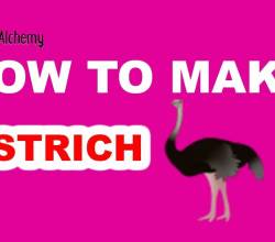 How to Make an Ostrich in Little Alchemy
