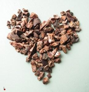 cocoanibs