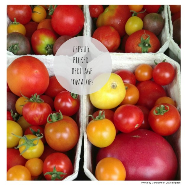 Heritage-tomatoes-Daylesfor-organic-farm