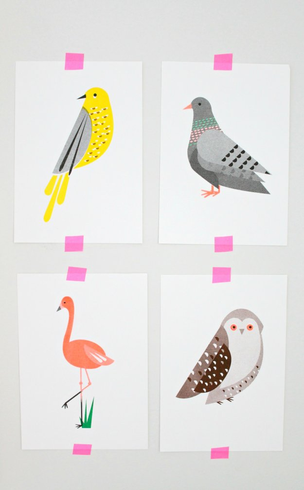 Scout-Editions-bird-postcards-featured-on-Little-Big-Bell