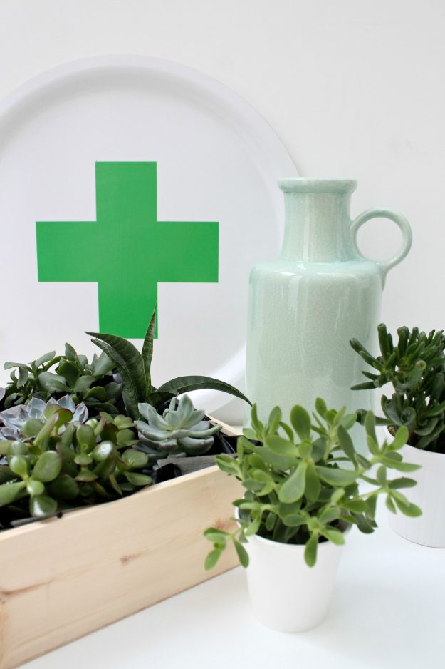 Decorate-with-indoor-plants-at-home-Little-Big-Bell