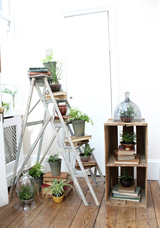 Styling-plants-at-home-Red-magazine-event-photo-by-Little-Big-Bell