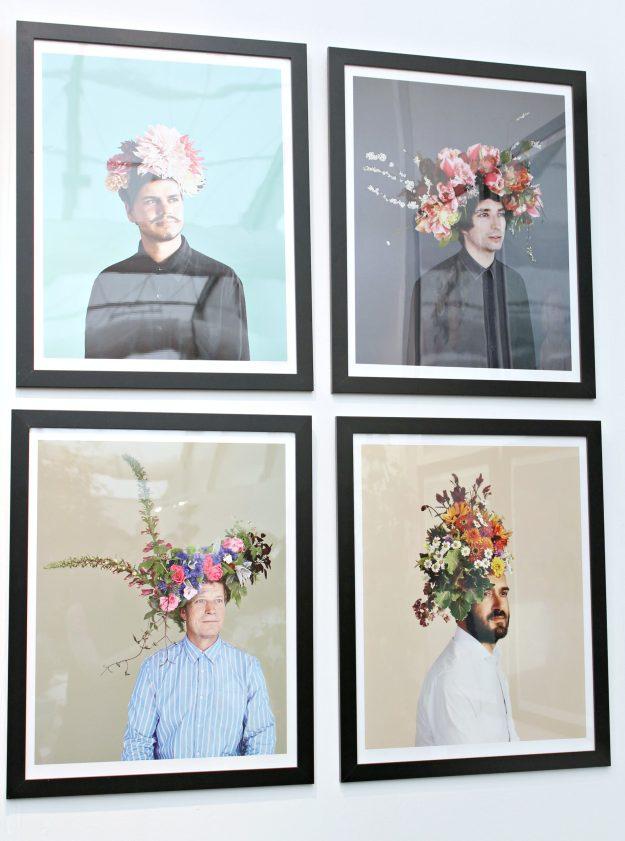 Electric-Daisy-flowers-portraits