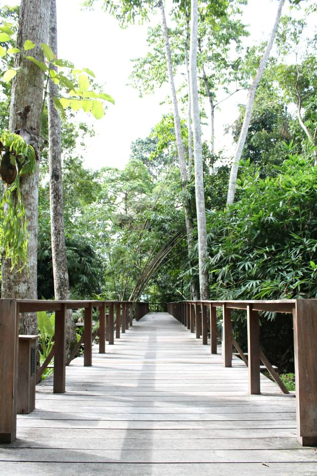 The-Datai-Langkawi-going-to-the-spa-photo-by-Little-big-Bell
