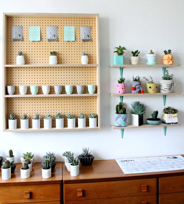 plant-shelf-photo-by-Little-Big-Bell