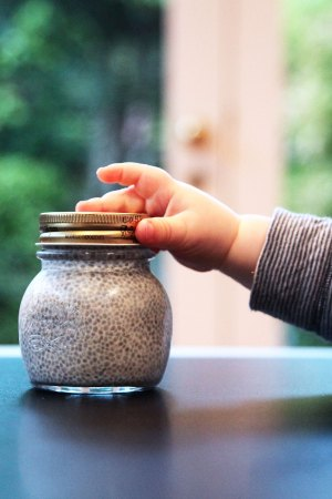 chia pudding - only 3 ingredients - perfect baby food from 6 months