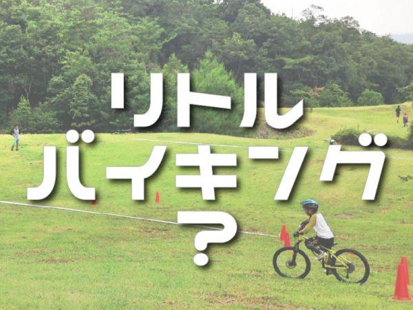 lb_gaiyou-01