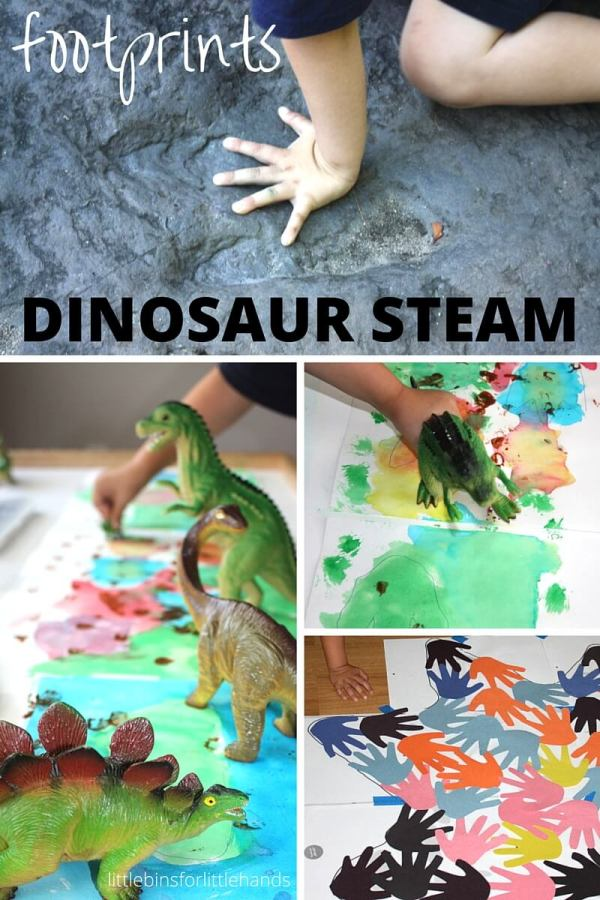Dinosaur Footprint Activities Steam Kids