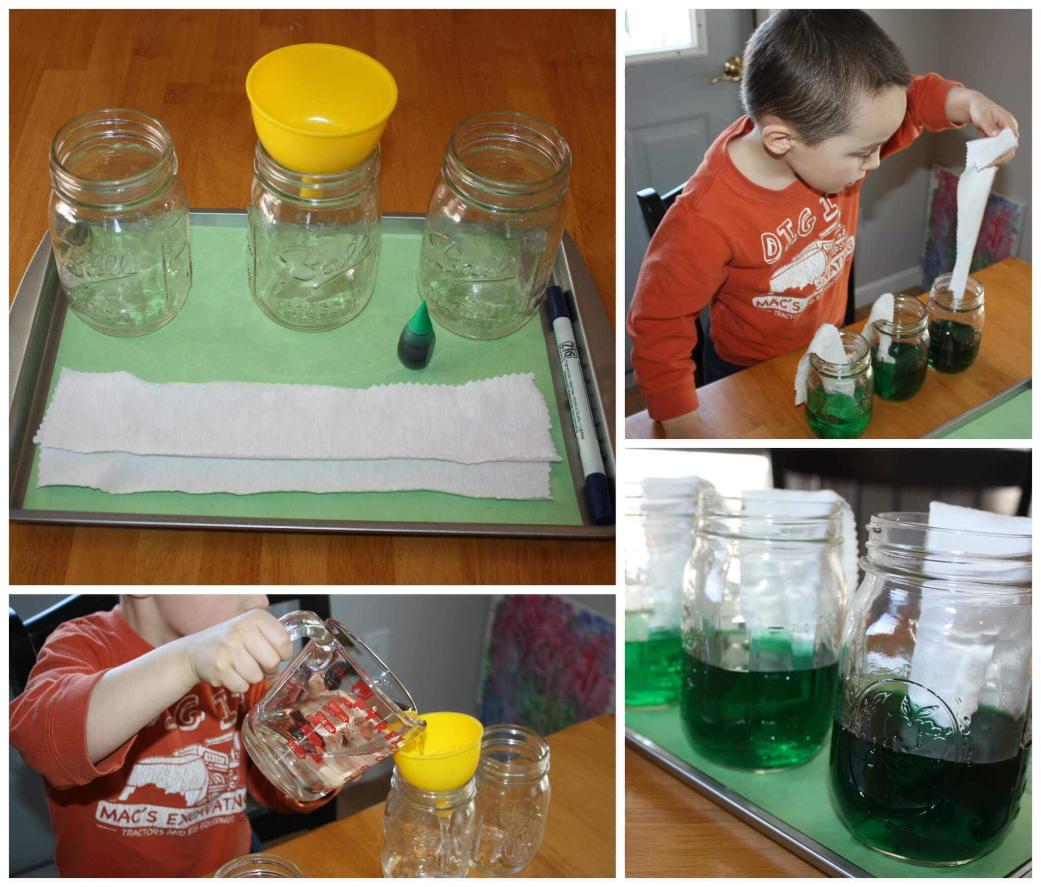 Exploring Colors Green Mixing Absorbing And Grading Shades Saturday Science