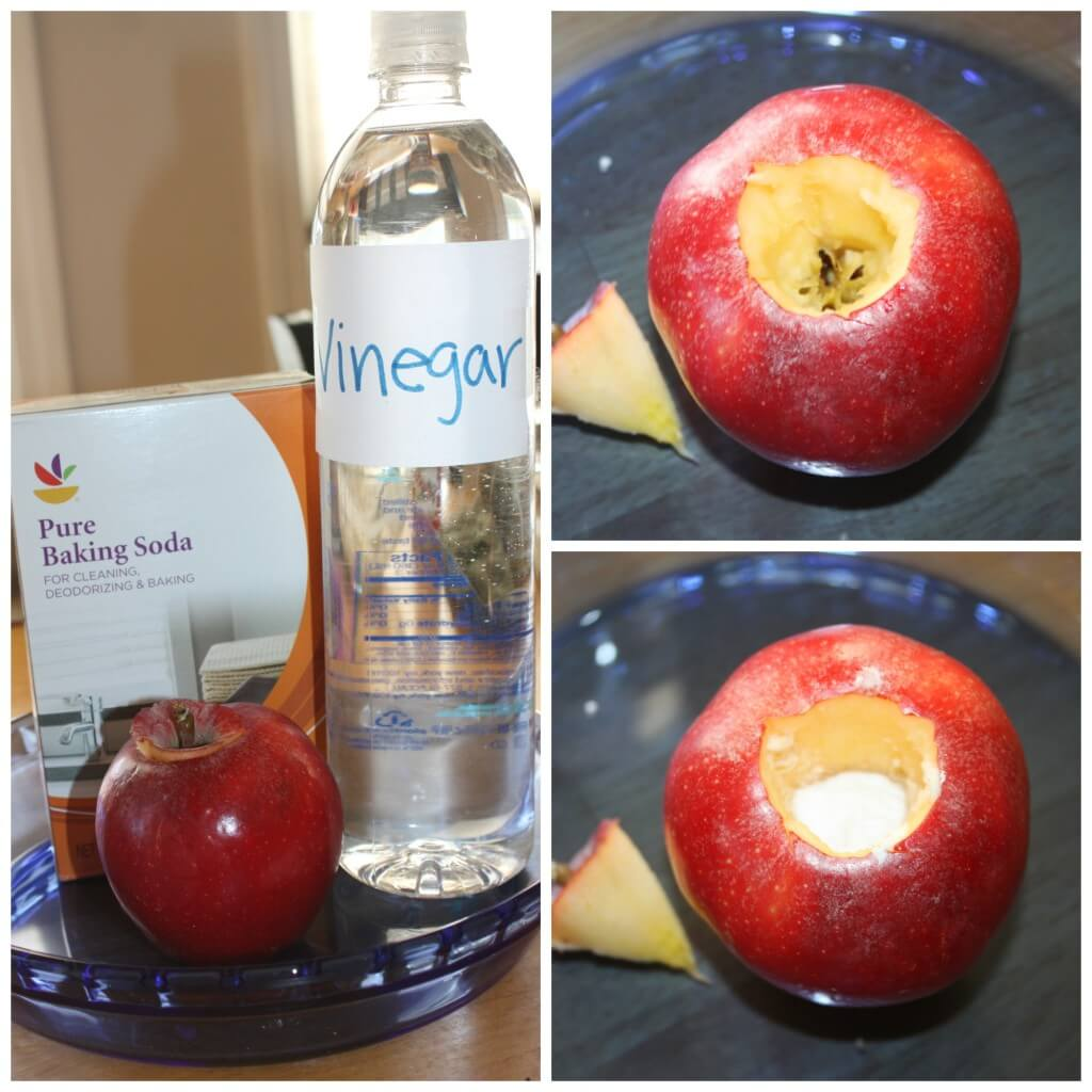 Erupting Apple Science And Apple Volcano Fall Activity