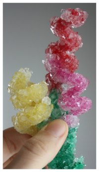 Crystal Flowers Spring Science Experiment and Craft for ...