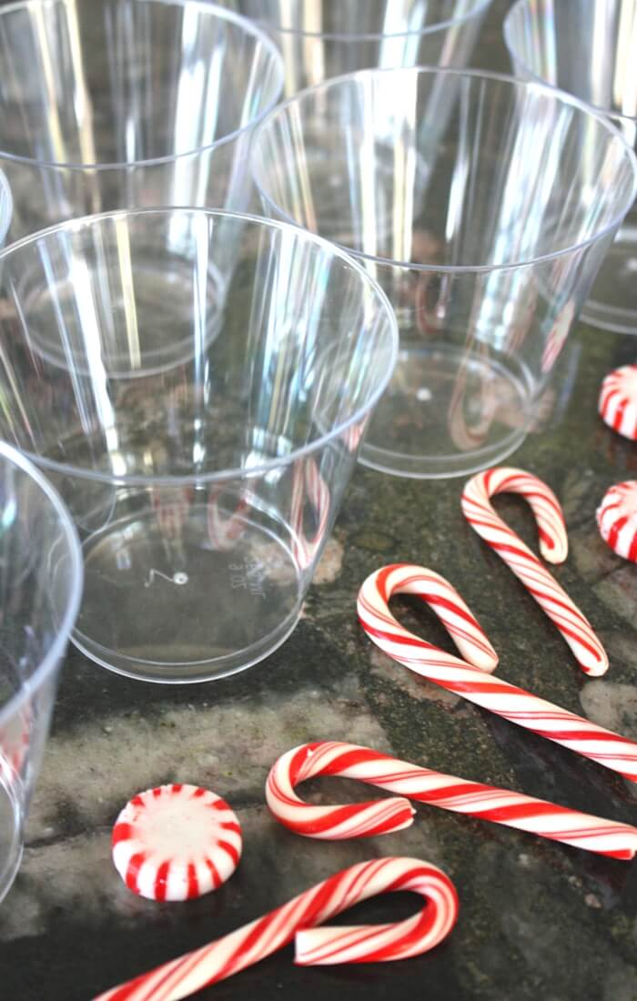 Dissolving Candy Canes Christmas Science Activity
